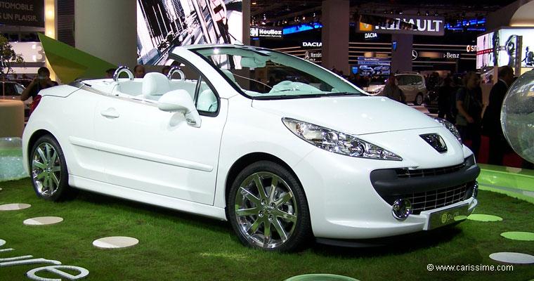 2010 Peugeot 207 epure Concept photo - 2